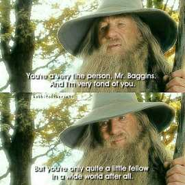 Image result for gandalf little fellow in a wide world